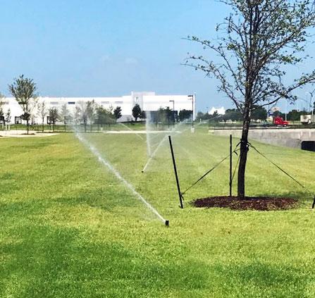 Dallas professional irrigator